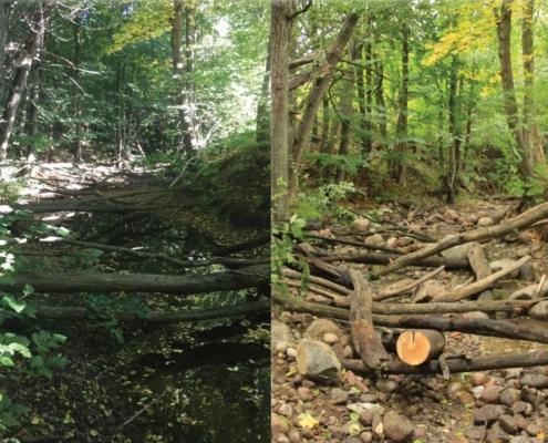 Before and after river restoration of Bränningenån